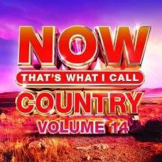 Now That's What I Call Country - Volume 14 - Various Artists