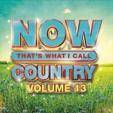 Now That's What I Call Country - Volume 13 -  Various Artists