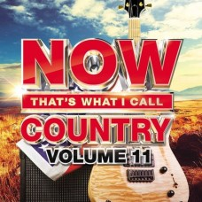 Now That's What I Call Country - Volume 11 -  Various Artists