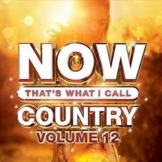 Now That's What I Call Country - Volume 12 -  Various Artists
